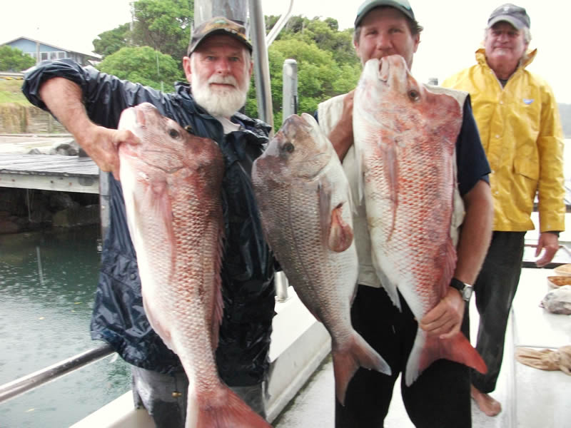 Wooli Fishing Charters
